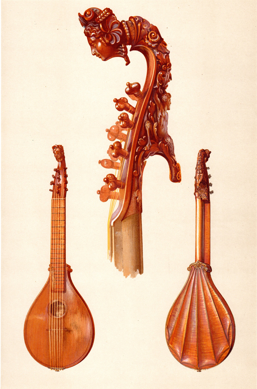 Musical Instruments Historic, Rare and Unique by A.J. Hipkins, illustrated by William Gibbs (1888)