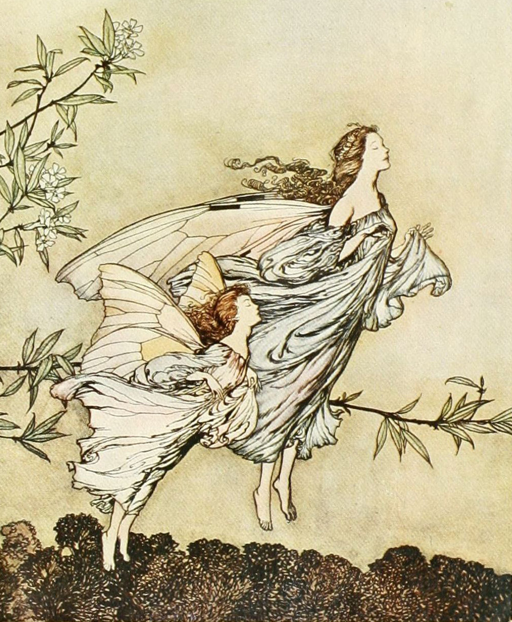 "Arthur Rackham illustrations from ""Peter Pan in Kensington Gardens"" (1975-1985)"