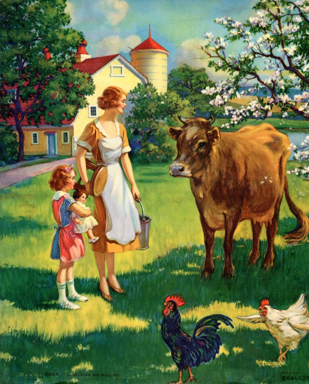 Cows, Livestock, Farm life, etc.