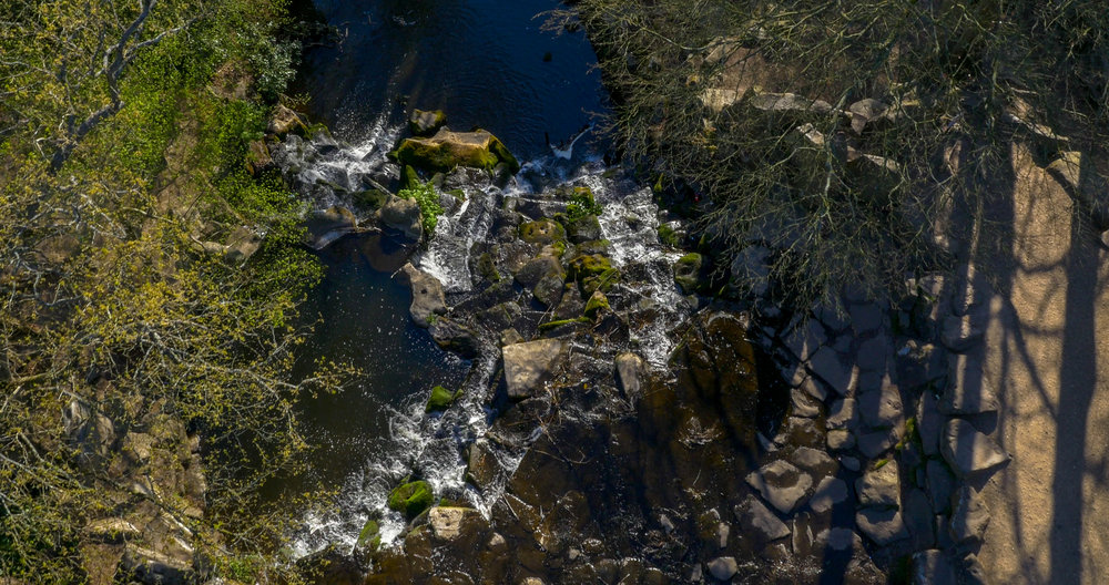 Virginia Water by Drone