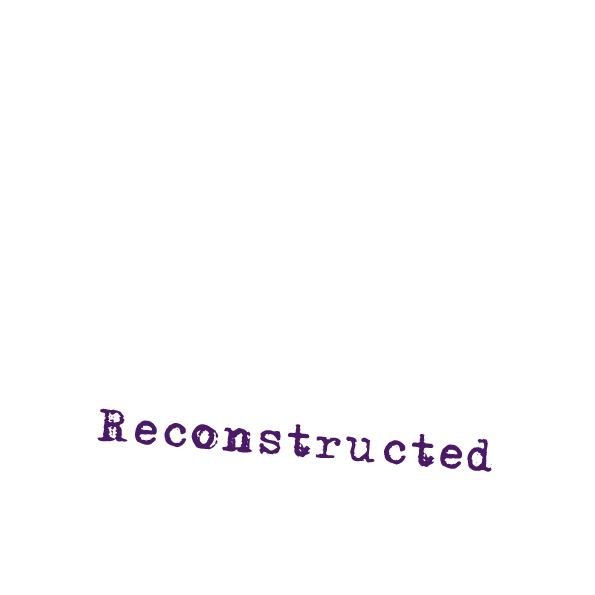 Motherhood Reconstructed