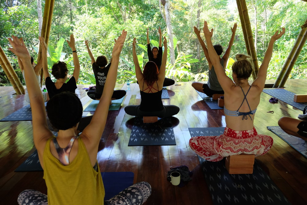 Twice daily yoga to improve alignment, strength and flow. Simply amazing. Expert instruction to relearn postures with immaculate precision and discover asanas (positions) you never thought possible!