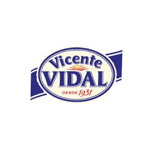 Vicente Vidal logo