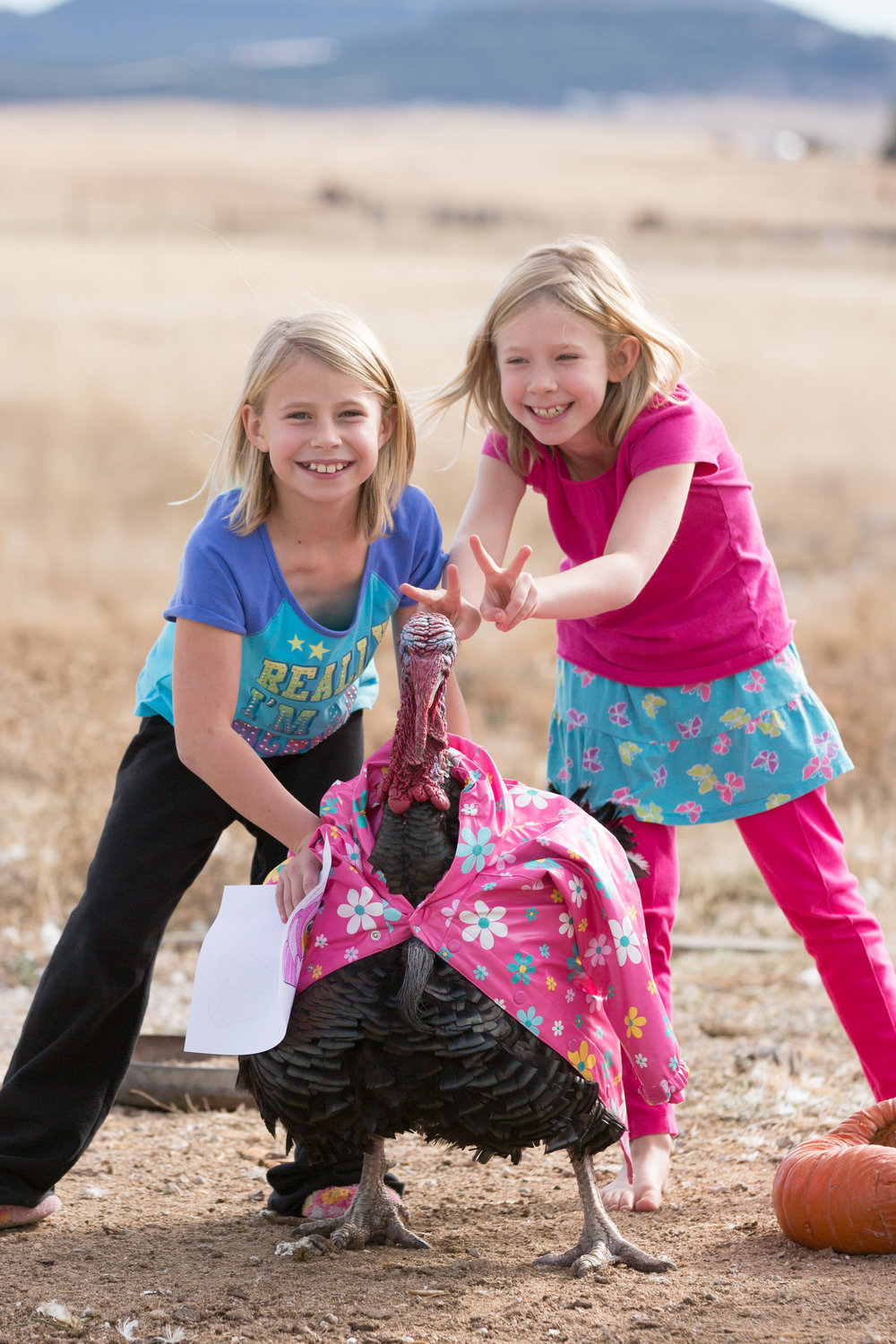 After reading a book about a turkey who dressed up in disguises to trick the farmer, the girls dressed up their own turkey.
