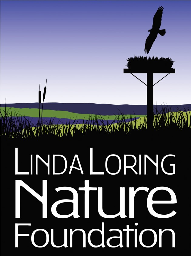 LLNF Logo.jpg
