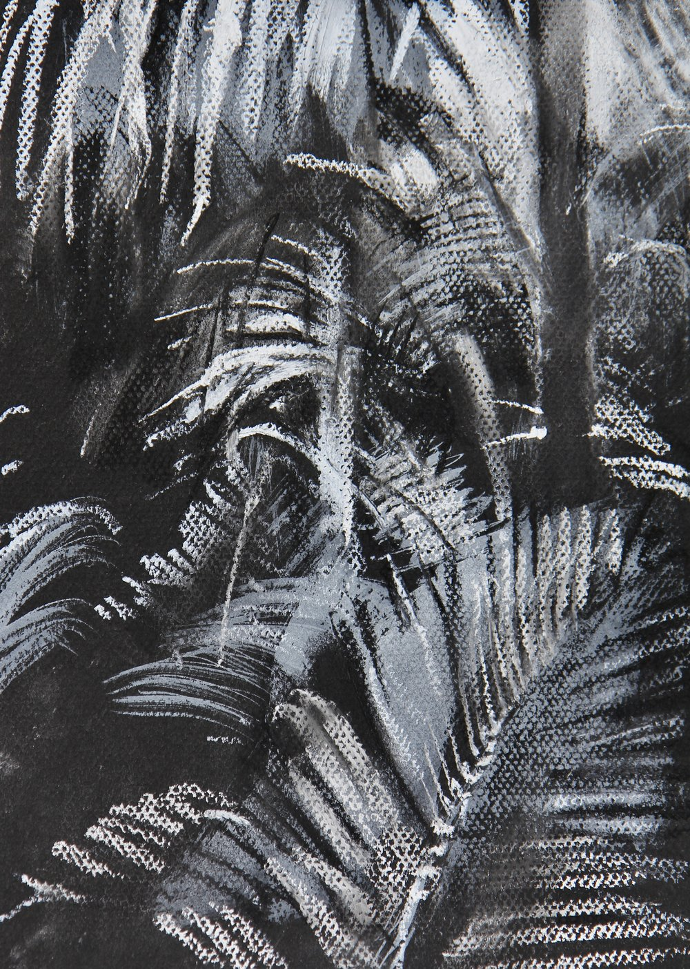 In the Palm House, Kew (2) - 21 x 29cm, pastel on black paper. Mounted on acid-free board £295