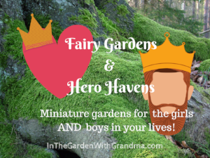 FAIRY GARDENS: NOT JUST FOR GIRLS!