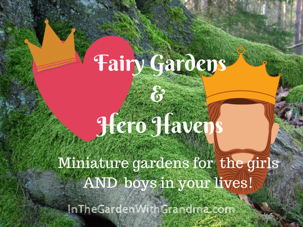 Here Are Links To Lihe Resource Books I Mention In The Video: Miniature  Gardens By Katie Elzer Peters; Fairy Gardening 101 By Fiona McDonald; ...