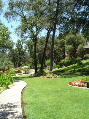 Centerville Estates - Centerville Estate sits on twenty-five acres in beautiful Butte Creek Canyon in Chico, California. Centerville Estate is known for being a spectacular, natural setting for outdoor weddings