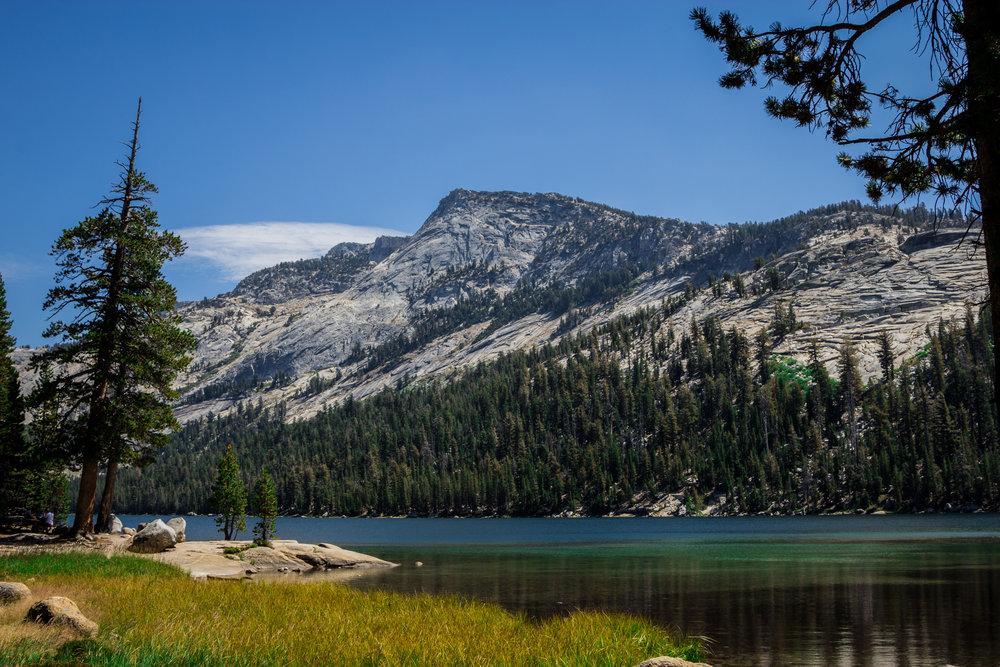 Yosemite 2016_Day3_029.jpg