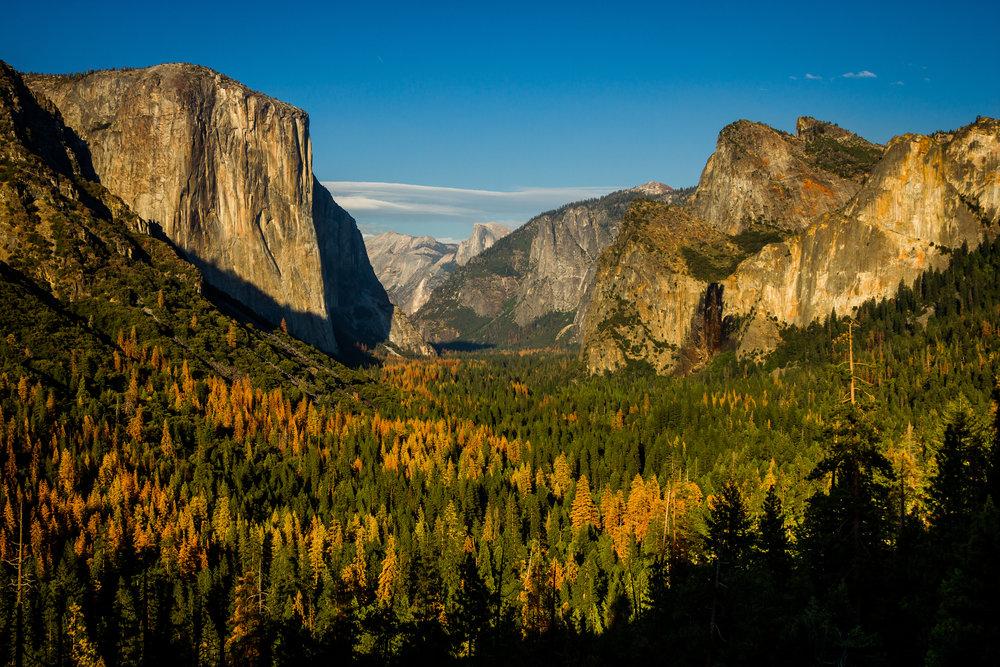 Yosemite 2016_Day3_054.jpg