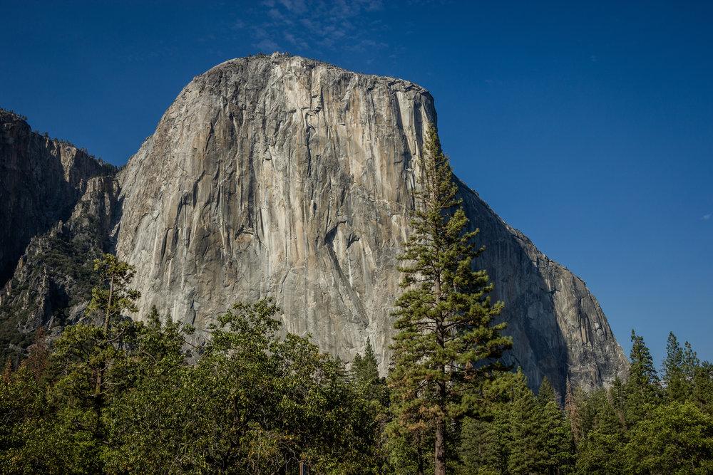 Yosemite 2016_Day3_051.jpg