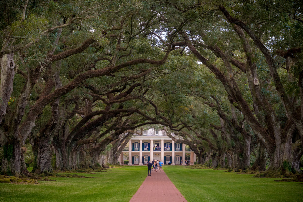 New Orleans 2016_Oak Alley Plantation_036.jpg