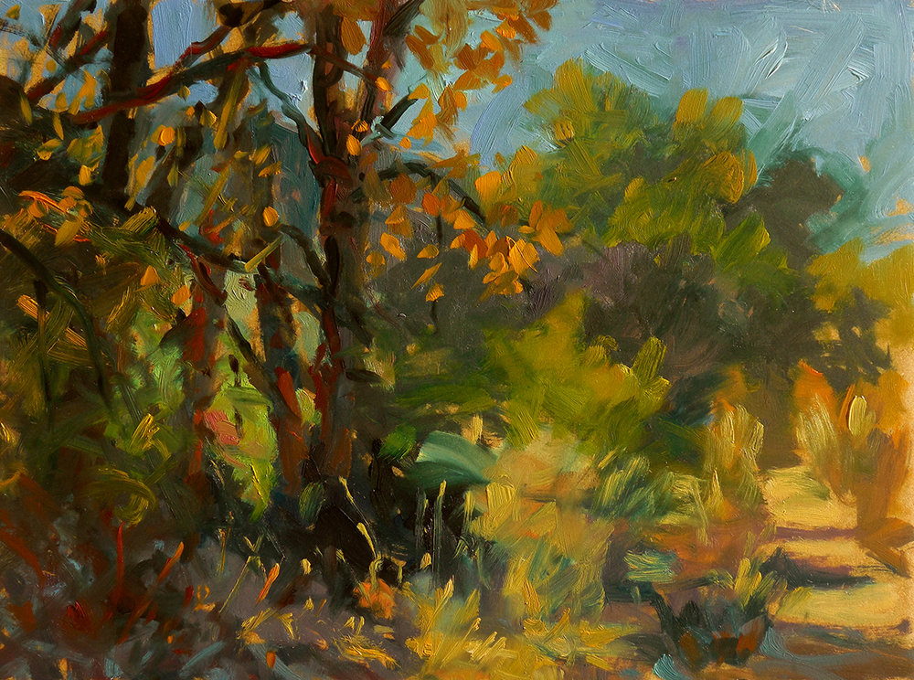 Sunlit Path, Tilman Bishop SWA