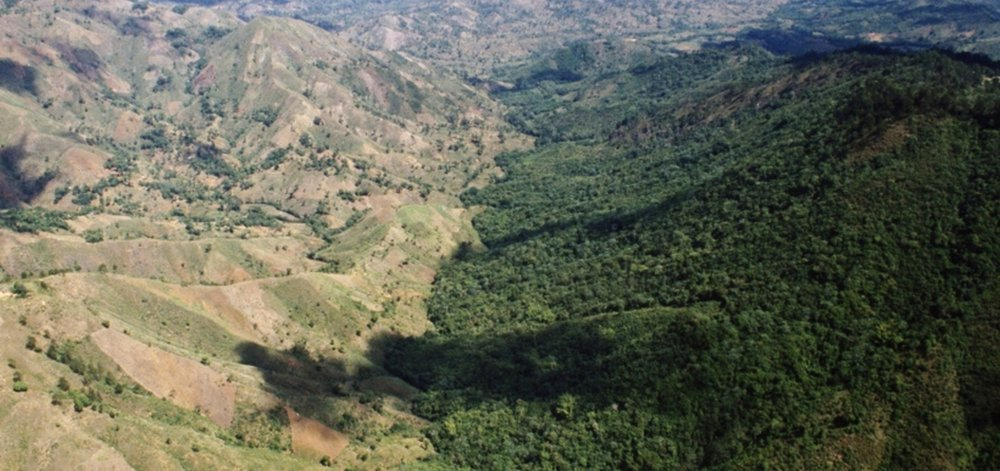Deforestation in Haiti visible along the Haitian-Dominican border. Image courtesy of  NPR .