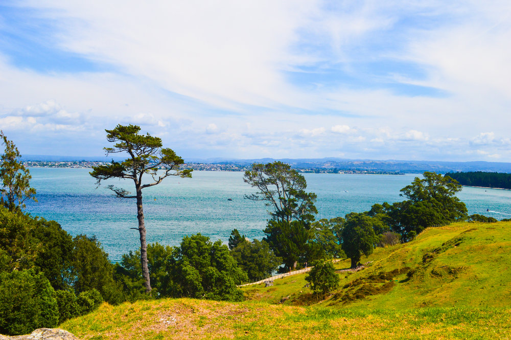 Hiking Mount Maunganui