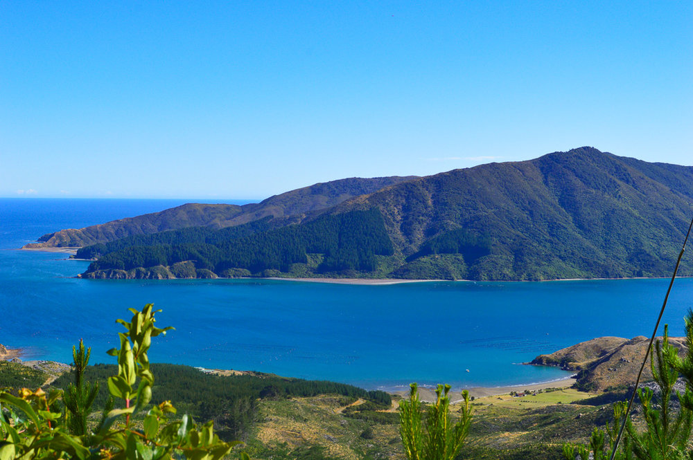 Scenic Marlborough Sounds