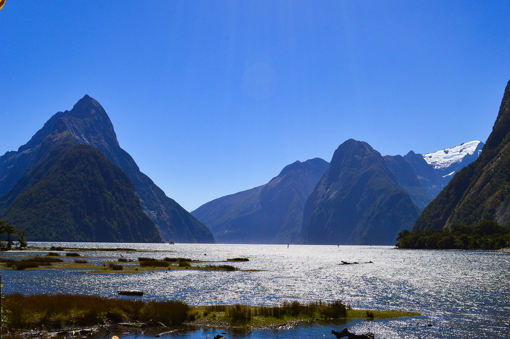 Limestone towers in the sea at Milford Sound