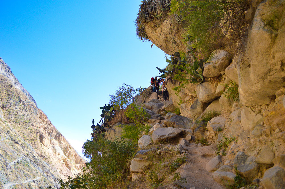Steep uphill walk to lunch at a homestay in colca canyon