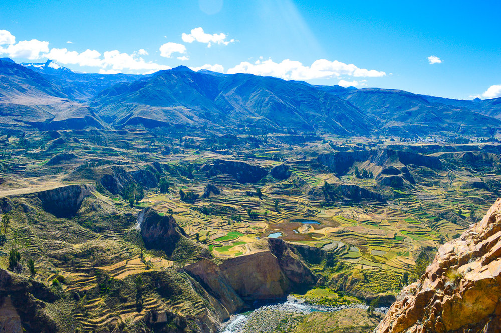 Rice terraces of the colca canyon villages