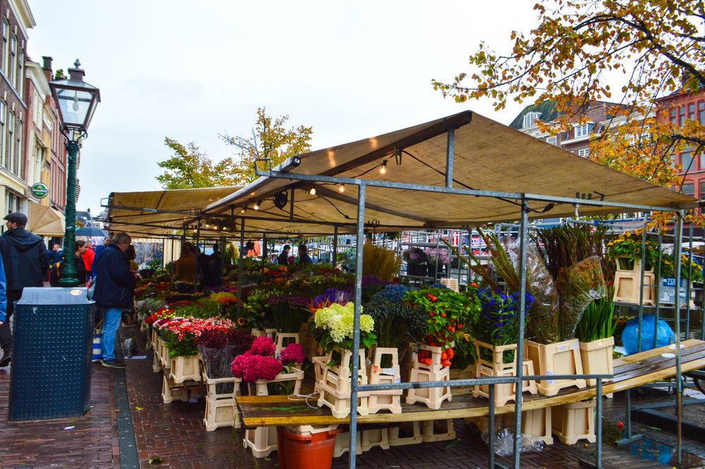 Leiden street market biggest in Holland