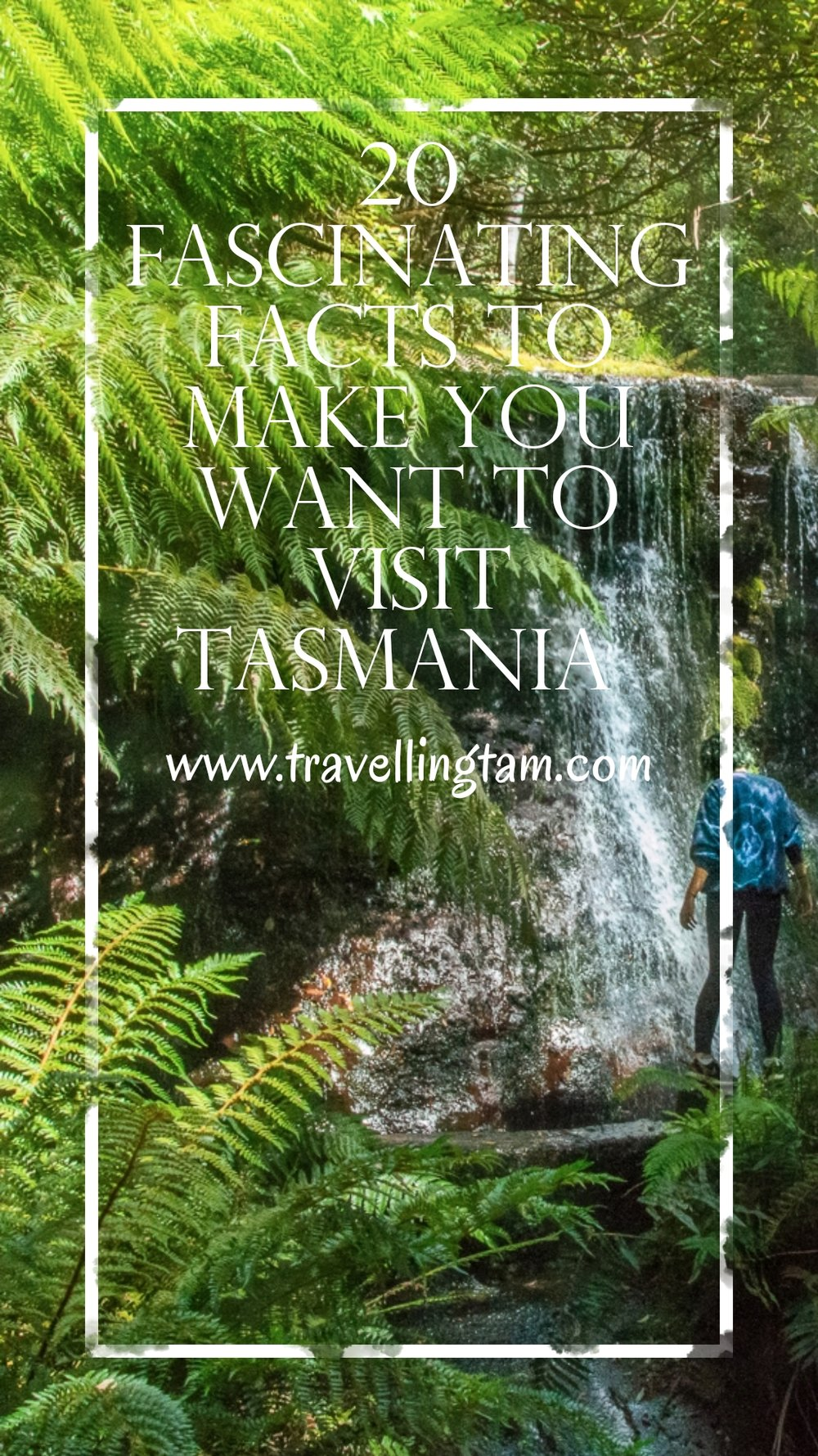 20 Fascinating Facts to Make You Want To Visit Tasmania!