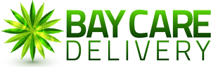 bay-care.png