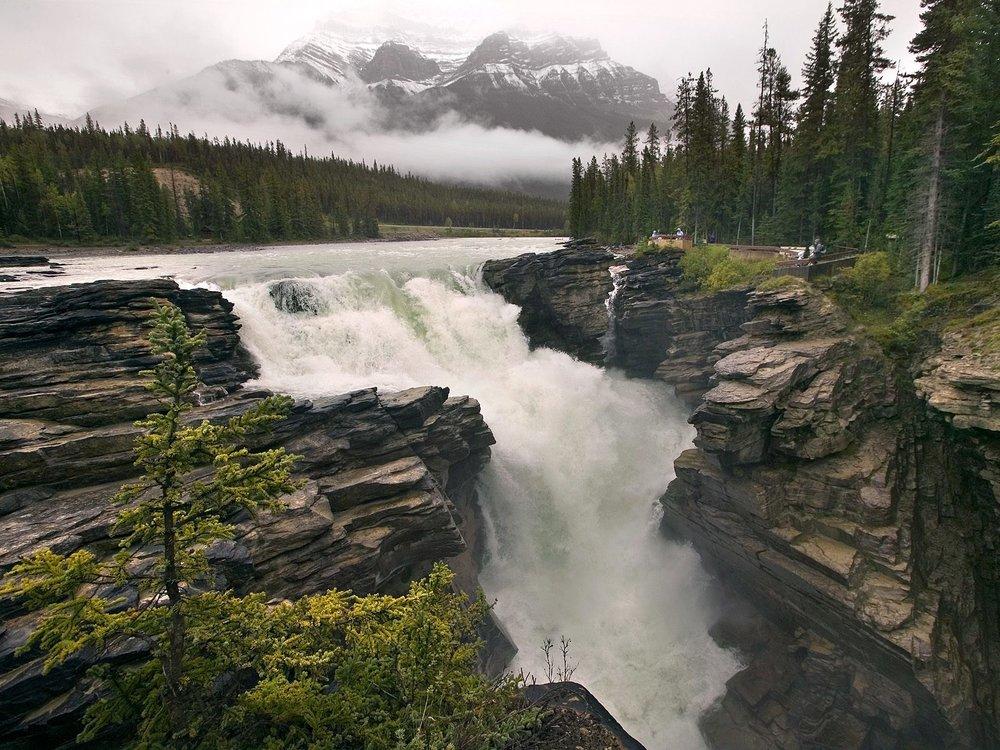 Athabasca Falls -