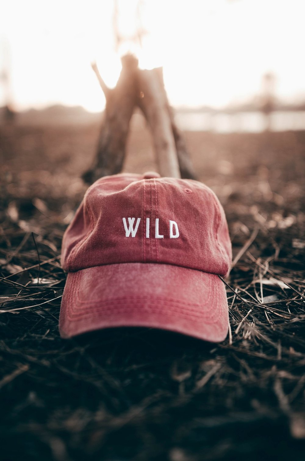 Click to Shop The Parks WILD Dad Hat!