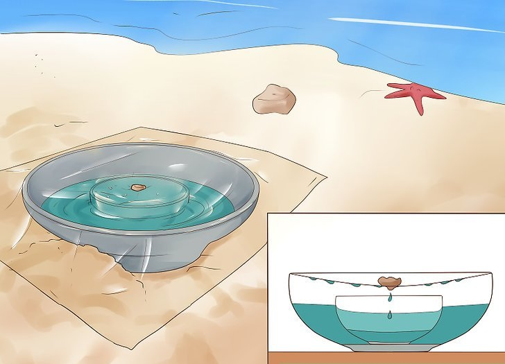 Image Sourced From Wikihow.om