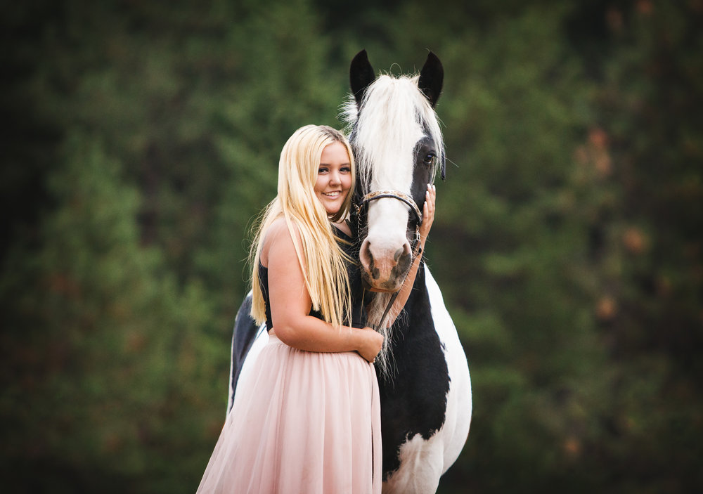 Horse & Rider Collections -