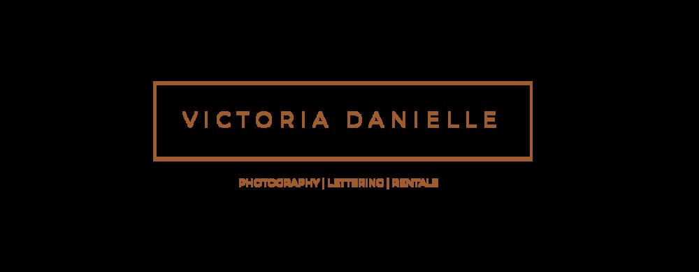 vd logo-08.png