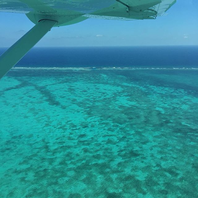 What hidden treasures lie in our turquoise waters... we adore this view of our beautiful barrier reef shot from the sky! No filter needed! 😍💙🌊 #diamondlodgebz #belizebarrierreef