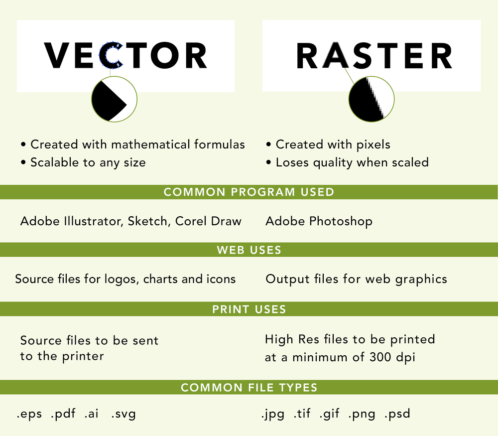 Vector-and-raster-chart.png