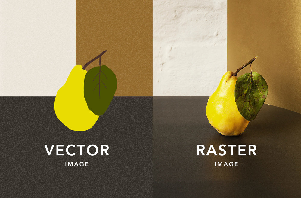 Vector-and-raster-images.jpg