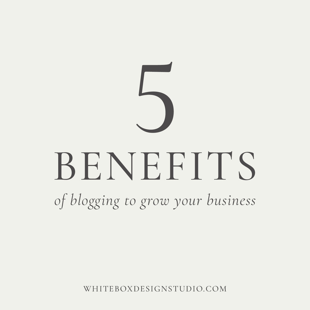 5 benefits of blogging to grow your business posted by White Box Design Studio