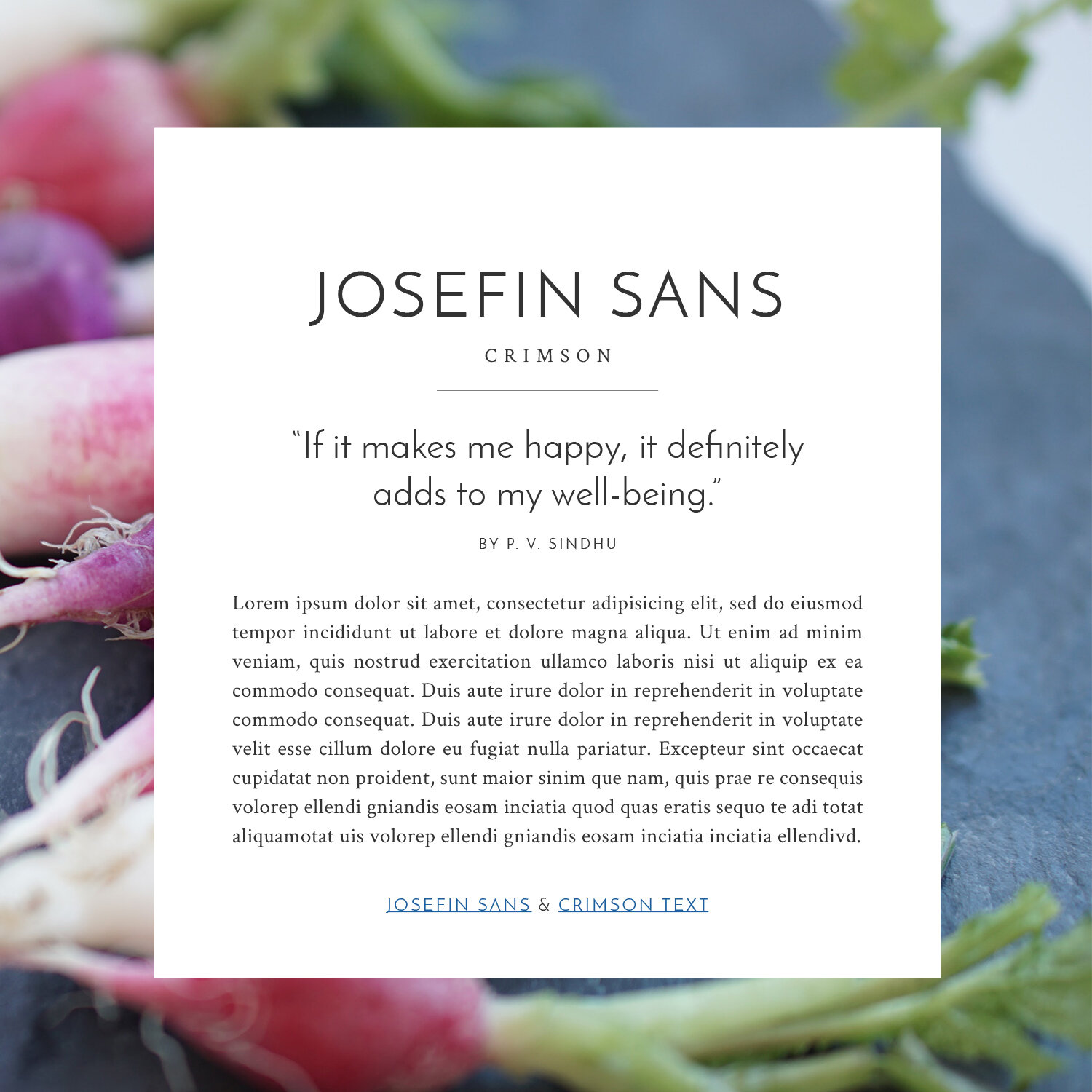 Clean and elegant Google font pairings for your brand and