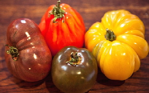 Heirloom-Tomatoes-by-Gabrielle.jpg