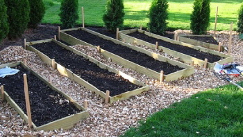 Raised-bed-Garden-by-Randy-and-Sharon-Green.jpg