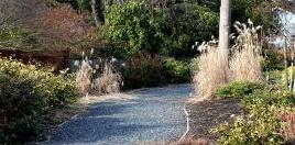 garden_path penywise.jpg