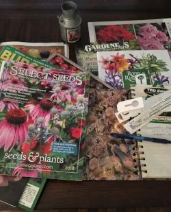 Garden Planning by Midwest Gardening.JPG