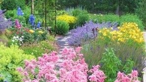 Best Plants.jpg