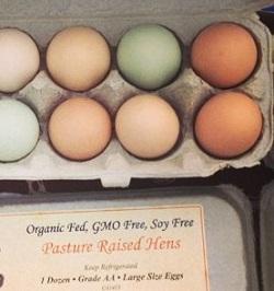 Organic Eggs.jpg