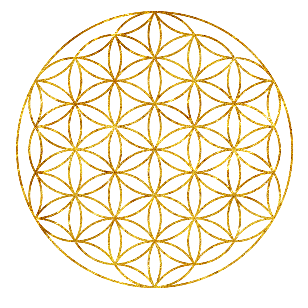 flower of life. igniting presence journey with odile
