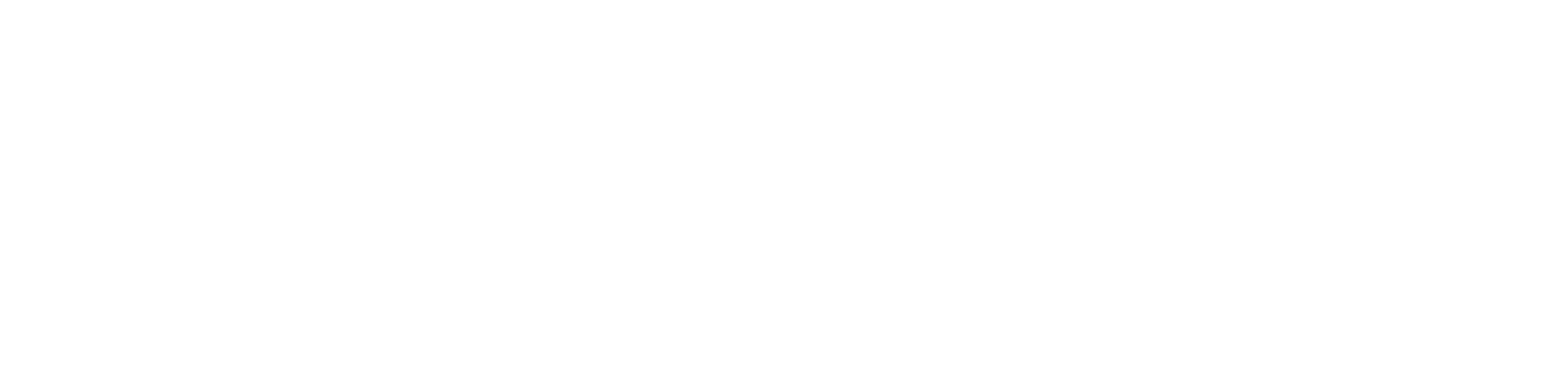 Icarus Aircraft Services