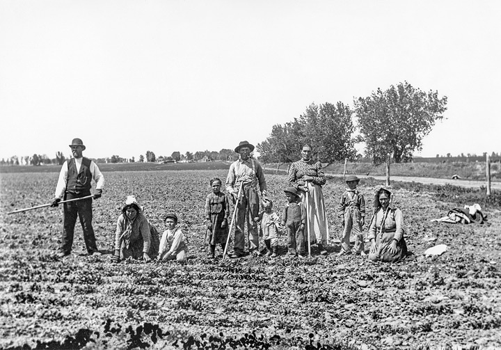 German sugar beet farmers. Photo credit:  Greeley History Museum