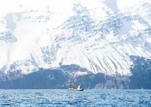 Iceland-Adventure-300x214.jpg