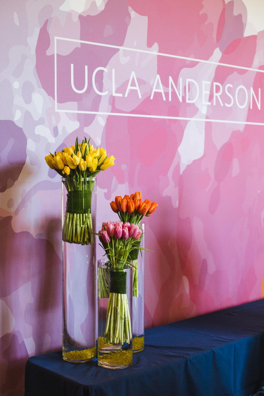 UCLA_VELOCITY-12.jpg