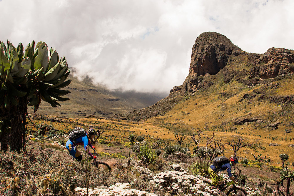 Clark Expeditions - Clark Expeditions offers Mountain Bike Holidays in Uganda, Kenya and South Africa, guided hikes on Mt Elgon as well as bespoke expeditions. They also organise the Elgon Enduro MTB race in Jan / Feb. Trips comply to British Standard 8848.