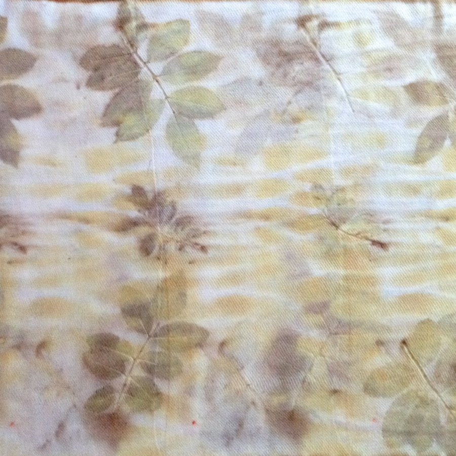 Sample 2 - fresh and rust water soaked rose leaves on wool twill.jpg
